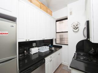 Gorgeous, Newly Renovated, Fully Furnished 2 Bdr - New York City vacation rentals