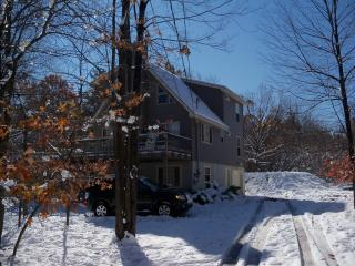 Newer Pocono Mountain Chalet - WIFI - Poconos vacation rentals