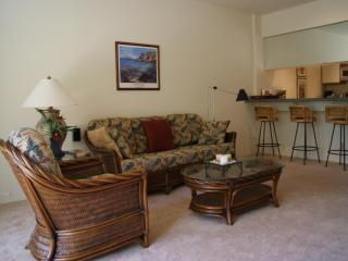 Beautiful 1 bedroom in Wailea - June Price $100 - Wailea vacation rentals