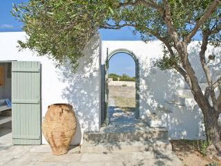 5 bedroom Charatcter Beach Villa in Paros - Cyclades vacation rentals
