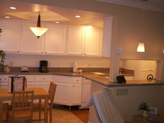 OCEAN VIEW on the PACIFIC~Luxury Low-Cost Lodging! - Long Beach vacation rentals