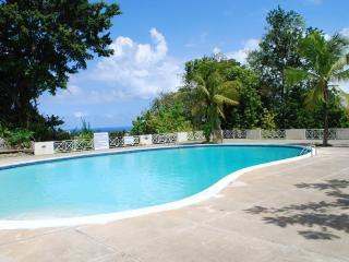 Columbus Heights Ocean View Studio Condo wi/fi 24h - Ocho Rios vacation rentals