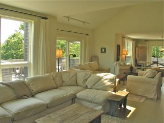 Luxury Near Long Point! (Luxury-Near-Long-Point!-WT151) - Martha's Vineyard vacation rentals