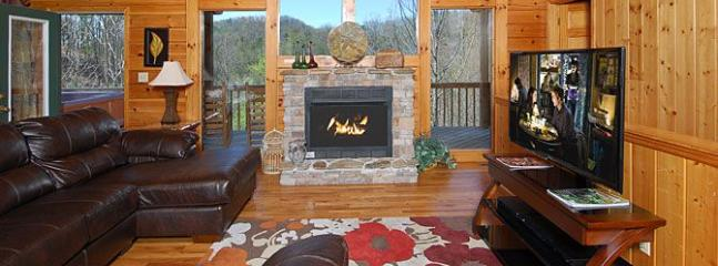 Castle in the Sky - Image 1 - Sevierville - rentals