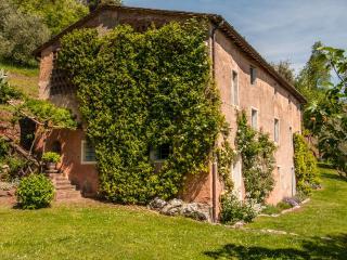 DAMIANO - Nocchi vacation rentals