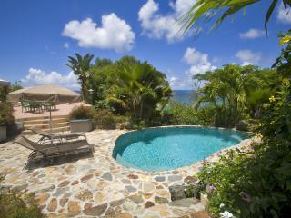 1 BR /Poolside / Steps from the Beach, Affordable! - Virgin Gorda vacation rentals