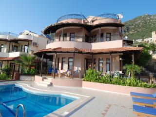 Lime Tree Villa - Kalkan vacation rentals