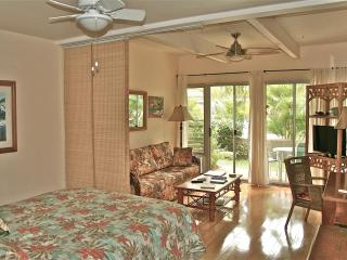 Clean, Quite, Comfortable ... at a GREAT Price! - Kihei vacation rentals