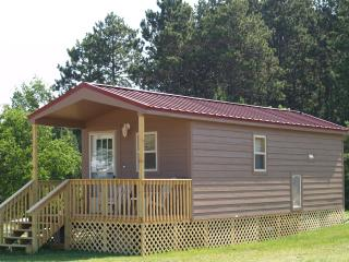 New Deluxe Cabins - Eagle River vacation rentals
