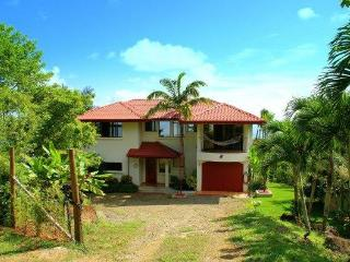 Luxury oceanview Eco-villa, 5 bedrooms with pool - Dominical vacation rentals