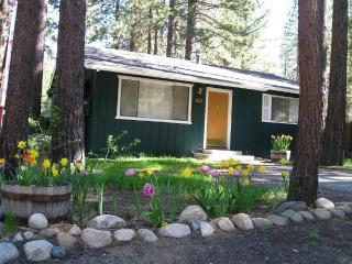 SOUTH LAKE TAHOE - NEAR THE LAKE AND SKIING - South Lake Tahoe vacation rentals