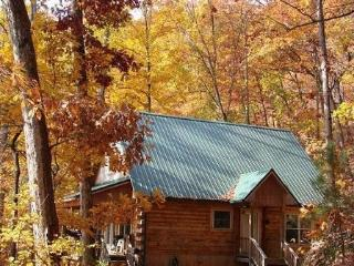 Hummingbird Hollow - This Mountainside Log Cabin with a View Is Less than 15 Minutes from the Great Smoky Mountains Railroad - Bryson City vacation rentals