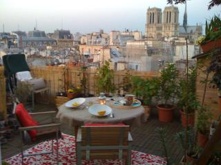 Notre Dame Paris Flat Penthouse with 30m2 Terrace - Paris vacation rentals