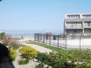 Harbours 36 - Weekly stays begin on Saturdays - South Haven vacation rentals