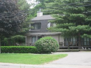854 North Shore Dr - Weekly stays begin on Fridays - South Haven vacation rentals