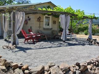 Free Nite~Vineyard Home,Bikes,Near Plaza,Wine,Wifi - Petaluma vacation rentals