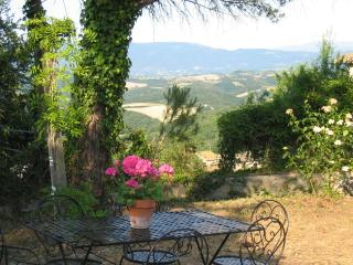 Beautiful villa in Umbrian Countryside - Todi vacation rentals