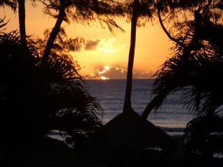 Islander Getaway Ocean View 241 - Lahaina vacation rentals