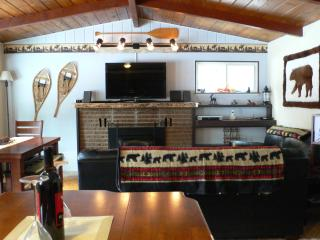 Adorable Mtn. Decor House w/ Hot-Tub & Game Room - South Lake Tahoe vacation rentals