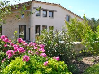 Château Bouynot - La Grange - Saint-Sauveur-de-Meilhan vacation rentals