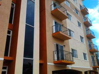 New Kingston Jamaica 2 Bed Apt Very Nice Décor 1- 876-790-5190 - Kingston vacation rentals