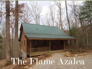 Flame Azalea - Image 1 - Townsend - rentals