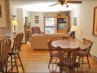 Hardwood Foors, Leather Couch, Recliner - Walk or Ride to the Slopes (4392) - Steamboat Springs vacation rentals