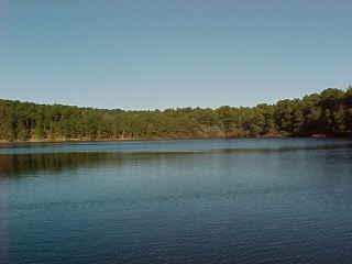 Path to a freshwater pond within the neighborhood - Wellfleet vacation rentals