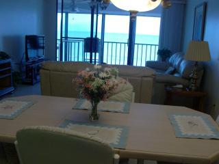 Fantastic 2 X 2 Condo Overlooking Gulf of Mexico - Indian Rocks Beach vacation rentals