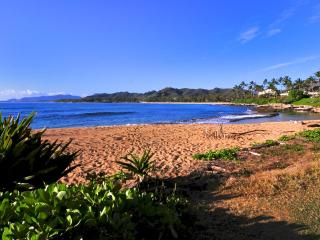 Handicap easy..Oceanfront , ground floor. Pool - Kauai vacation rentals