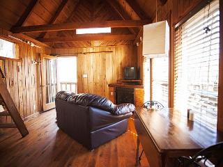 The Bird Nest Cabin - Slade vacation rentals
