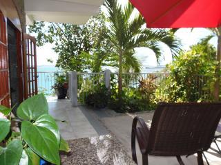 $250 Last Minute  -  Bluebitch, Luxury, Beachfront - Cruz Bay vacation rentals