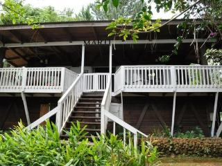 INCREDIBLE Rain Forest Experience - Canovanas vacation rentals