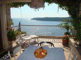 Hedera A17 - Dubrovnik vacation rentals