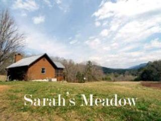 Sarah's Meadow Cabin - Image 1 - Townsend - rentals