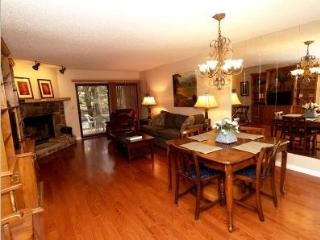 River Condo - Townsend vacation rentals