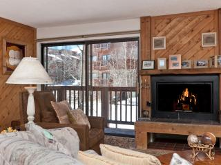 1 Bedroom, 2 Bathroom House in Breckenridge  (02C1) - Breckenridge vacation rentals