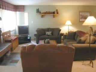 1 Bedroom, 2 Bathroom House in Breckenridge  (09C1) - Image 1 - Breckenridge - rentals
