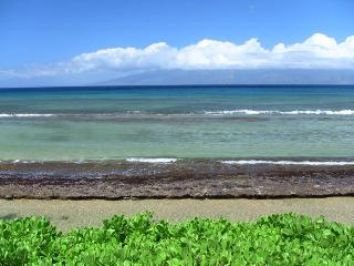 10ft from Ocean, 2 Bedrm Beachfront $150,000 Reno! - Kihei vacation rentals