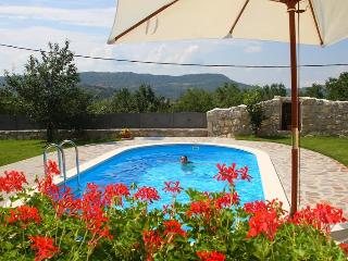 Charming  villa for 10+4 person with WHIRLPOOL - Buzet vacation rentals