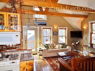 Town! Pets! Yard! Slps 6! - Crested Butte vacation rentals