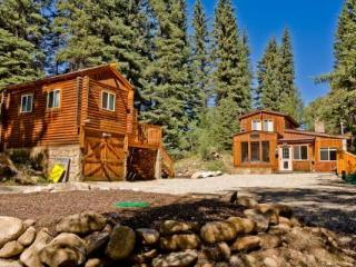 Private Cabin on Spring Creek! Fireplace! Slps 10 - Crested Butte vacation rentals