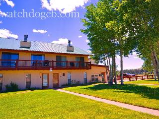 Slps 8 -Pets-2 car garage-Hot tub! - Crested Butte vacation rentals