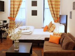 #1K-Luxury Studio Vacation Apt, Fully furnished - New York City vacation rentals