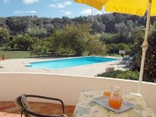Lovely cottage on organic citrus farm in the sun - Portimão vacation rentals