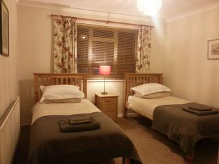 Farnham Flat: ideal for business & single visitors - Dorking vacation rentals