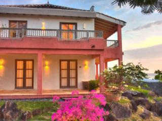 Pedasi Boutique Ocean View Loft - Pedasi vacation rentals