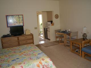 Cheerful, quiet studio in Wailea - $99/night - Wailea vacation rentals