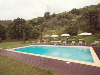 The Valley Farmhouse with private pool near Pisa - Lari vacation rentals