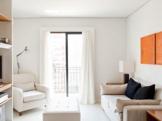 Well-Located 1 Bedroom Apartment in Itaim Bibi - Sao Paulo vacation rentals